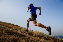 Sports Injury Management--